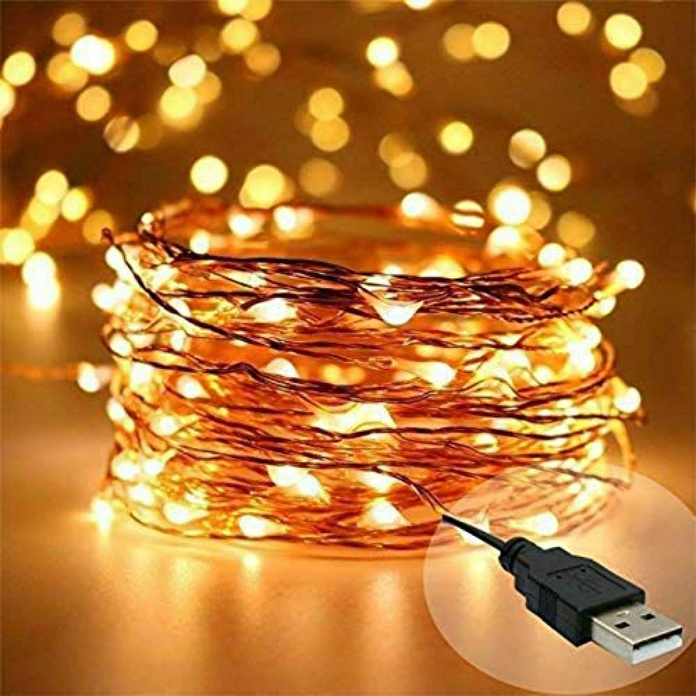 10 Meter 100 LED Copper String Led Light with 2 Meter USB  for Indoor  amp  Outdoor Decorations  Warm White  Pack of 1   Standard  Lex-10m Copper-2MUsb
